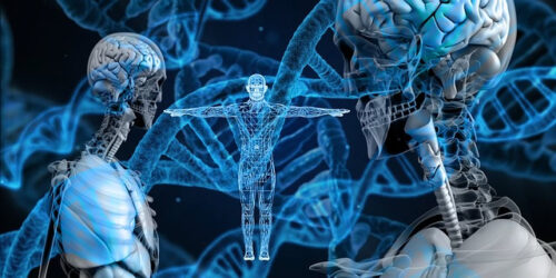 DNA and the brain